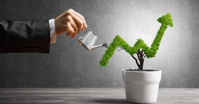 The Power of Portfolio Diversification in Wealth Creation